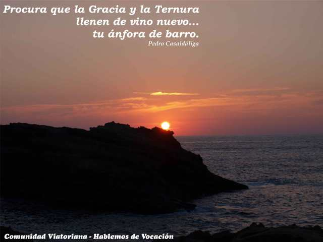 Vocación-Viatoriana_02