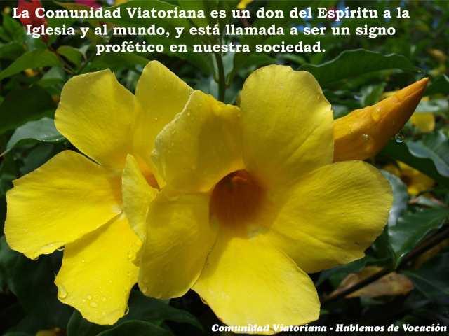 Vocacion-Viatoriana_v1