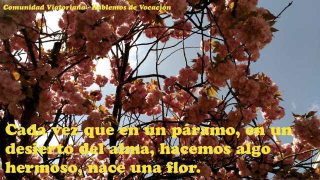 Vocacion-Viatoriana_35