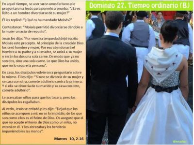 Vigesimoseptimo Domingo del Tiempo Ordinario