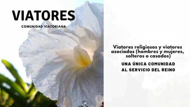 Viatores-Comunidad Viatoriana